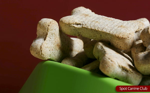 are milkbone dog treats safe