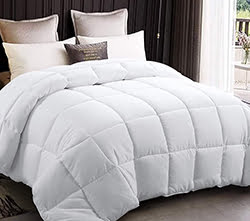 EDILLY All Season Queen Size Soft Quilted
