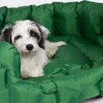 Best Calming Dog Bed Reviews 2021 and Buying Guide