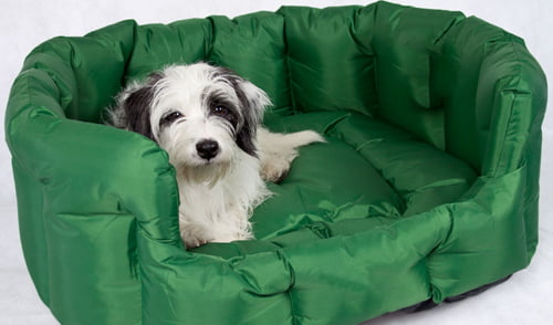 Best Calming Dog Bed Reviews