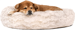 Best Friends by Sheri The Original Calming Dog Bed