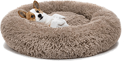 MIXJOY Orthopedic Dog Bed Comfortable