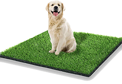 Starroad artificial grass rug turf for dogs