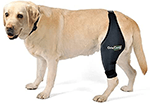 Ortocanis Original Knee Brace for Dogs with ACL