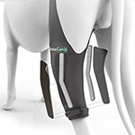 Ortocanis Original Knee Immobilizer for Dogs with ACL