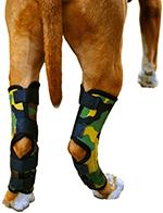 Pet Lovers Stuff Dog Rear Leg Brace